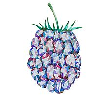 Low Poly Watercolor Blackberry by LidiaP