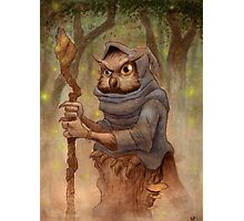 Ugla the Owl Wizard Photographic Print