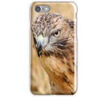 Red Kite Stare iPhone Case/Skin