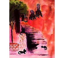 Cats playing on the stairs, watercolor Photographic Print