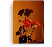 Following shadows Canvas Print