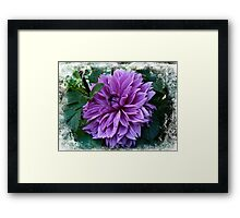 Born of the Purple Framed Print