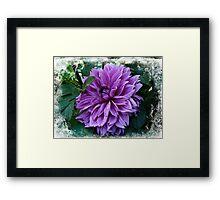 Born of the Purple Framed Print