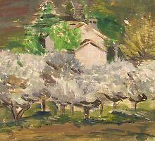 Olive Trees by Debbie Douglass