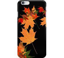 Colorful autumn maple leaf design  iPhone Case/Skin