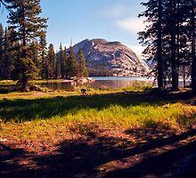 Tenaya Lake. Yosemite National Park, CA. by Daniel Regner