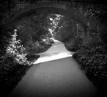 A clear path ahead. by AyvaApple