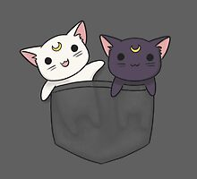 Pocket Kitties  by LiRoVi
