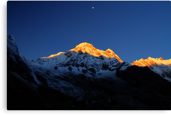 Annapurna South, Himalaya, Nepal. by Andy Newman