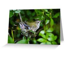 Hummingbird Babies III: Ready to Fly Greeting Card