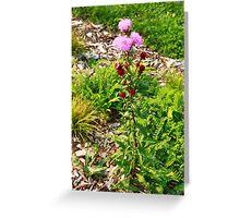 Hairy Purple Flower Greeting Card