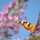 Lounging on the Lilacs by savvysisstudio