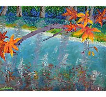 Autumn Brilliance Photographic Print