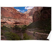 Rock Walls of Zion Poster