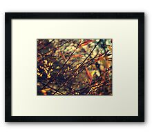 Happenings Framed Print