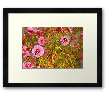Double Bumble Framed Print