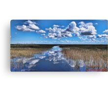 The Everglades... Canvas Print