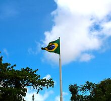 Brazil Flag by oftheessence
