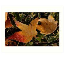 Autumn Crystals Art Print