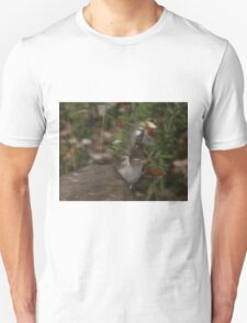 Rufous-Crowned Sparrow T-Shirt