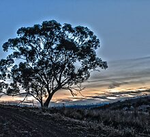 Evenings Last Light HDR by Candice O'Neill
