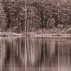 Trees On The Lake by Keri Harrish