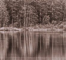 Trees On The Lake by Keri Harrish