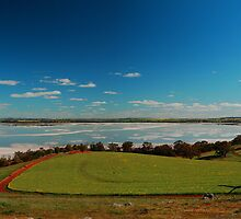 Lake Dumbleyung pano 2 by Adrian Kent
