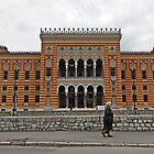 The library,Sarajevo by rasim1