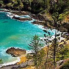 Norfolk Island, Coastal View. by johnrf