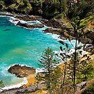 Norfolk Island, Coastal View. by johnrf