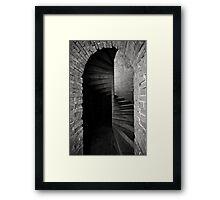 Illusive  Framed Print