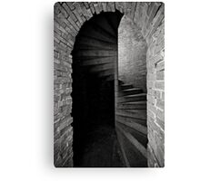 Illusive  Canvas Print