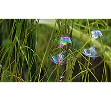 Bubbles Photographic Print