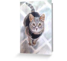 Sweet Little Willow Greeting Card