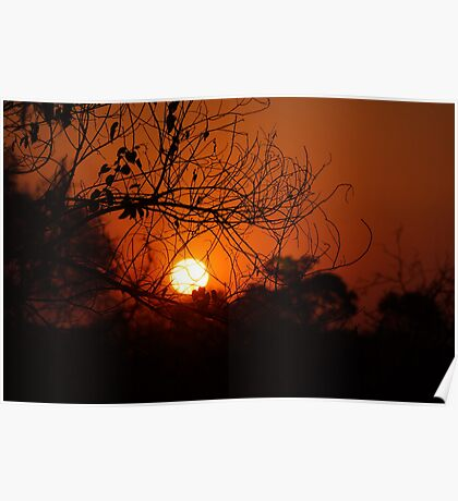 Okavango Sunset Poster