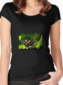 Red Admiral butterfly on a leaf Women's Fitted Scoop T-Shirt