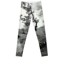 The Crooked Tree Leggings