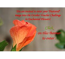 Banner - Enchanted Flowers October Challenge Photographic Print