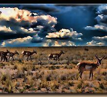 The Antelope by Richard  Gerhard