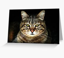 If Looks Could Kill.... Greeting Card