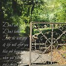 The Gate is open ... by TriciaDanby