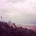 Beach by JordanMaureen