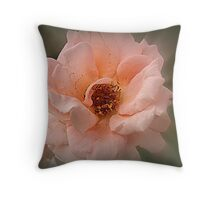 Late Glow Of Summer Throw Pillow