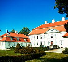 Suuremõisa Manor  by tutulele