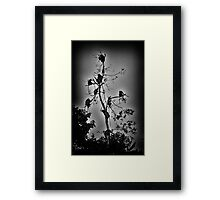 """Get-Together"" (B&W) Framed Print"