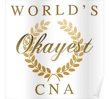 World's Okayest CNA Poster