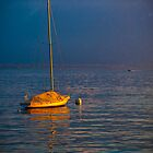 Boat in the gold light by CreativeSnap