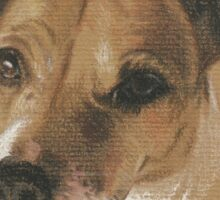 Lady the Jack Russell Sticker