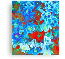 Columbine Flowers Canvas Print